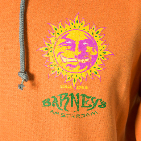 Hooded Sweatshirts (Ladies) - Orange 3